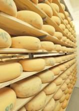 Aischtaler Käse